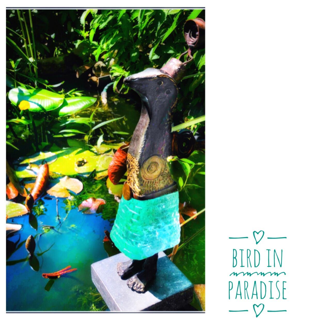 Astrid Roox foto Bird in Paradise in onze tuin en vijver